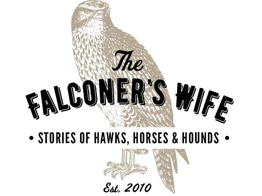 The Falconer's Wife